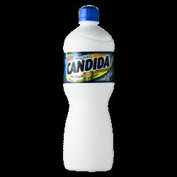 AGUA SANITARIA 1L SUPER CANDIDA
